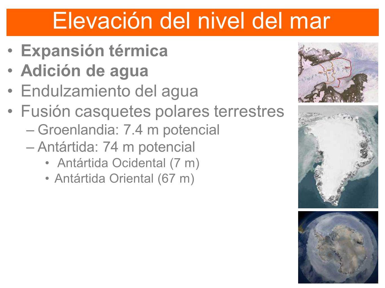 Elevación del nivel del mar Expansión térmica Adición de agua Endulzamiento del agua Fusión casquetes polares terrestres –Groenlandia: 7.4 m potencial