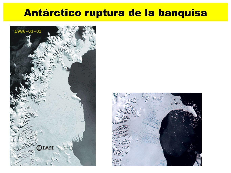 29 Antárctico ruptura de la banquisa Entre el 31 de enero y el 7 de marzo de 2002. Un total de cerca de 3.250 km2 (350.000 campos de futbol) de la pla