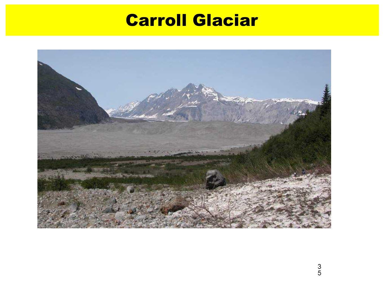 35 Carroll Glaciar 2004