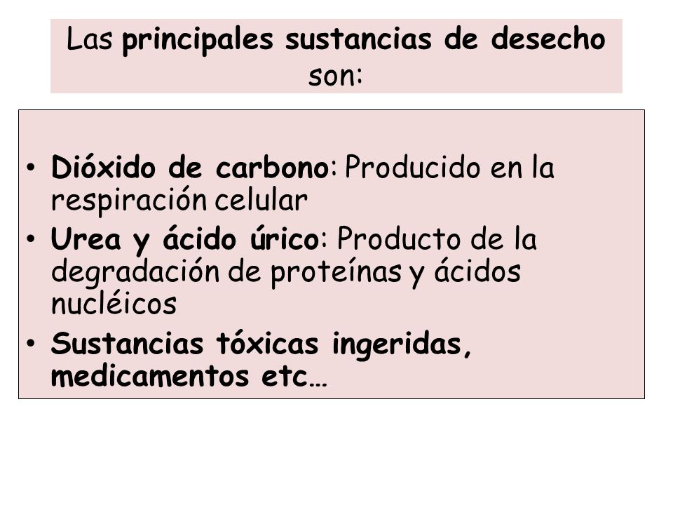 Las principales sustancias de desecho son: Dióxido de carbono: Producido en la respiración celular Urea y ácido úrico: Producto de la degradación de p