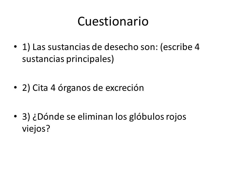 Cuestionario 1) Las sustancias de desecho son: (escribe 4 sustancias principales) 2) Cita 4 órganos de excreción 3) ¿Dónde se eliminan los glóbulos ro