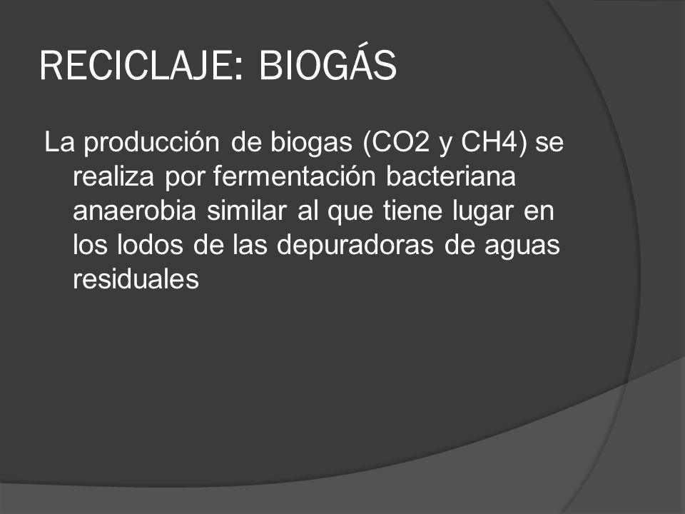 RECICLAJE: BIOGÁS La producción de biogas (CO2 y CH4) se realiza por fermentación bacteriana anaerobia similar al que tiene lugar en los lodos de las