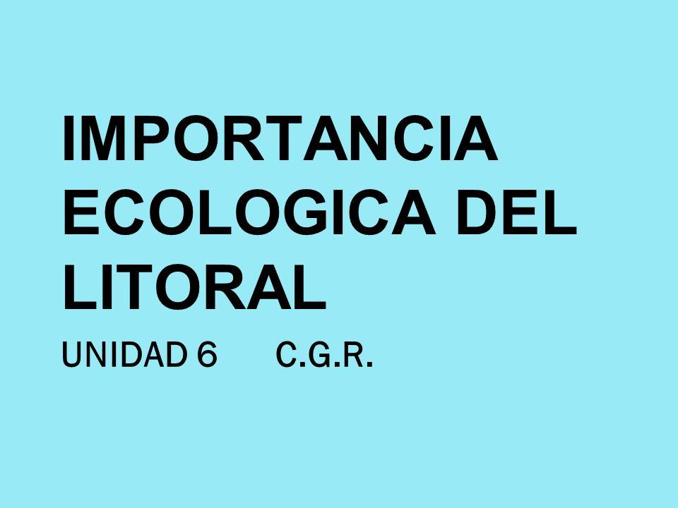 UNIDAD 6 C.G.R. IMPORTANCIA ECOLOGICA DEL LITORAL