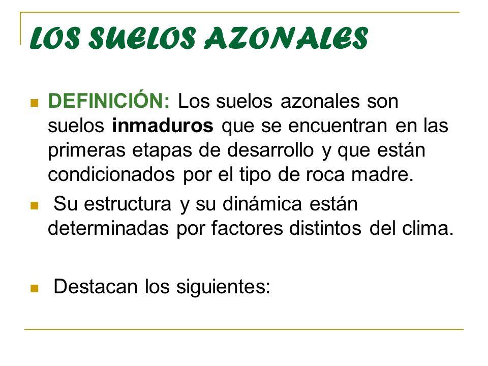 LOS SUELOS AZONALES DEFINICIÓN: Los suelos azonales son suelos inmaduros que se encuentran en las primeras etapas de desarrollo y que están condiciona