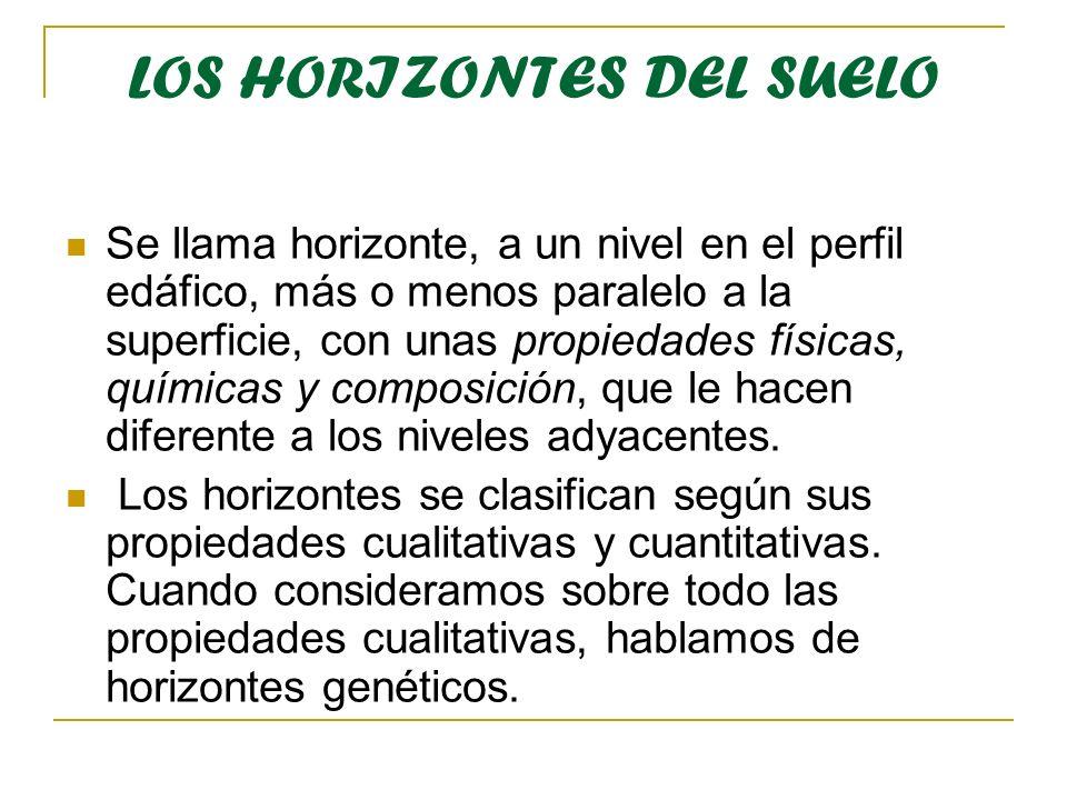 LOS HORIZONTES DEL SUELO Se llama horizonte, a un nivel en el perfil edáfico, más o menos paralelo a la superficie, con unas propiedades físicas, quím