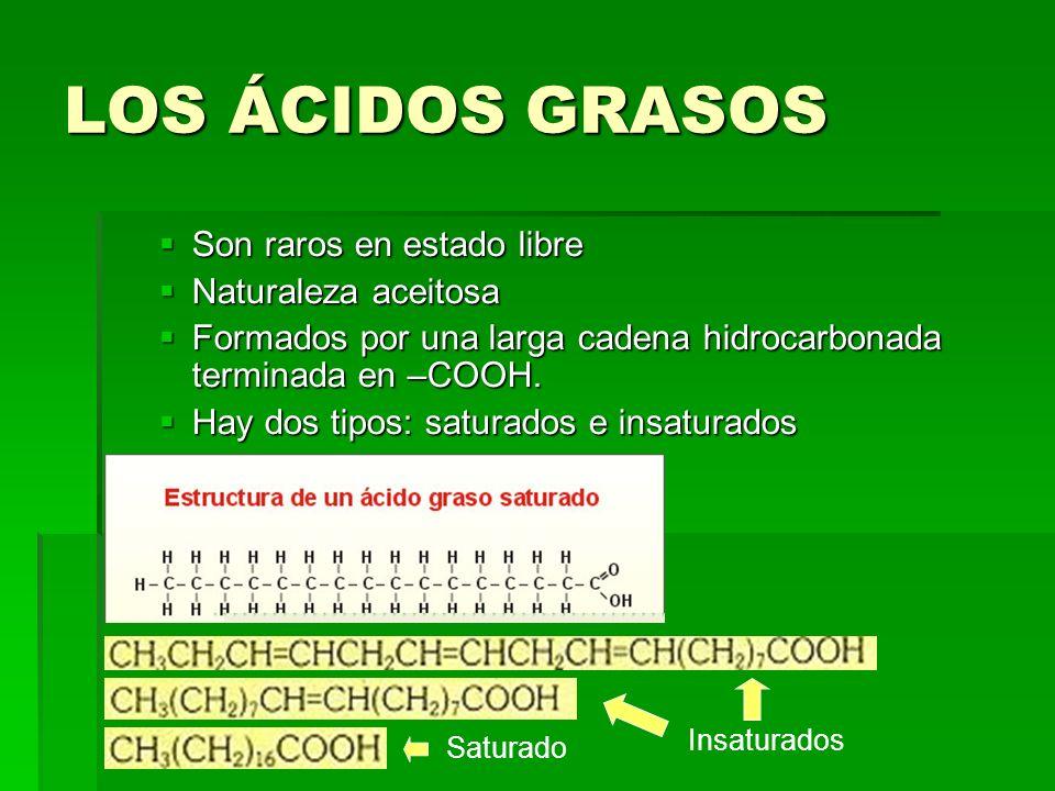 LOS ÁCIDOS GRASOS Son raros en estado libre Son raros en estado libre Naturaleza aceitosa Naturaleza aceitosa Formados por una larga cadena hidrocarbo