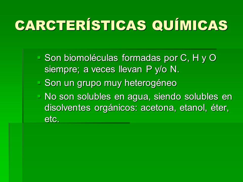 CARCTERÍSTICAS QUÍMICAS Son biomoléculas formadas por C, H y O siempre; a veces llevan P y/o N. Son biomoléculas formadas por C, H y O siempre; a vece