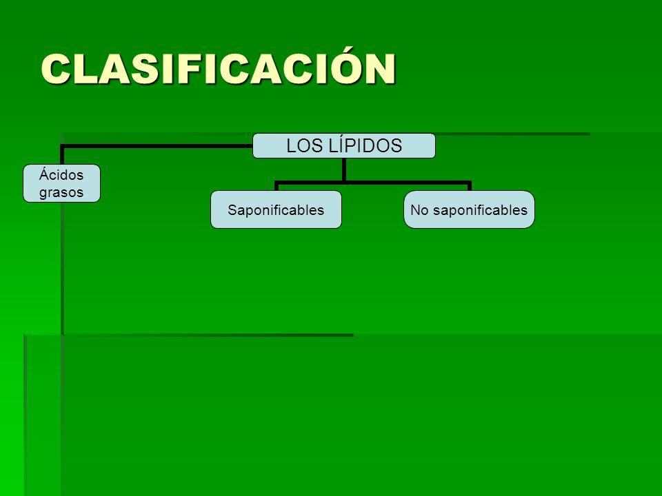 CLASIFICACIÓN LOS LÍPIDOS Ácidos grasosSaponificables No saponificables