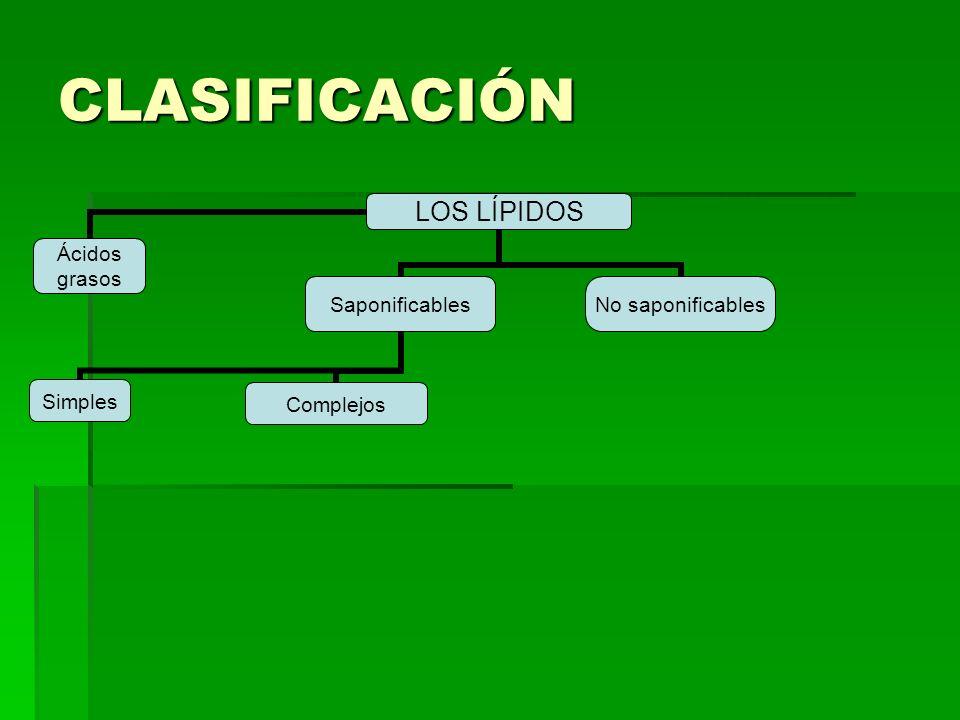 CLASIFICACIÓN LOS LÍPIDOS Ácidos grasosSaponificables SimplesComplejos No saponificables