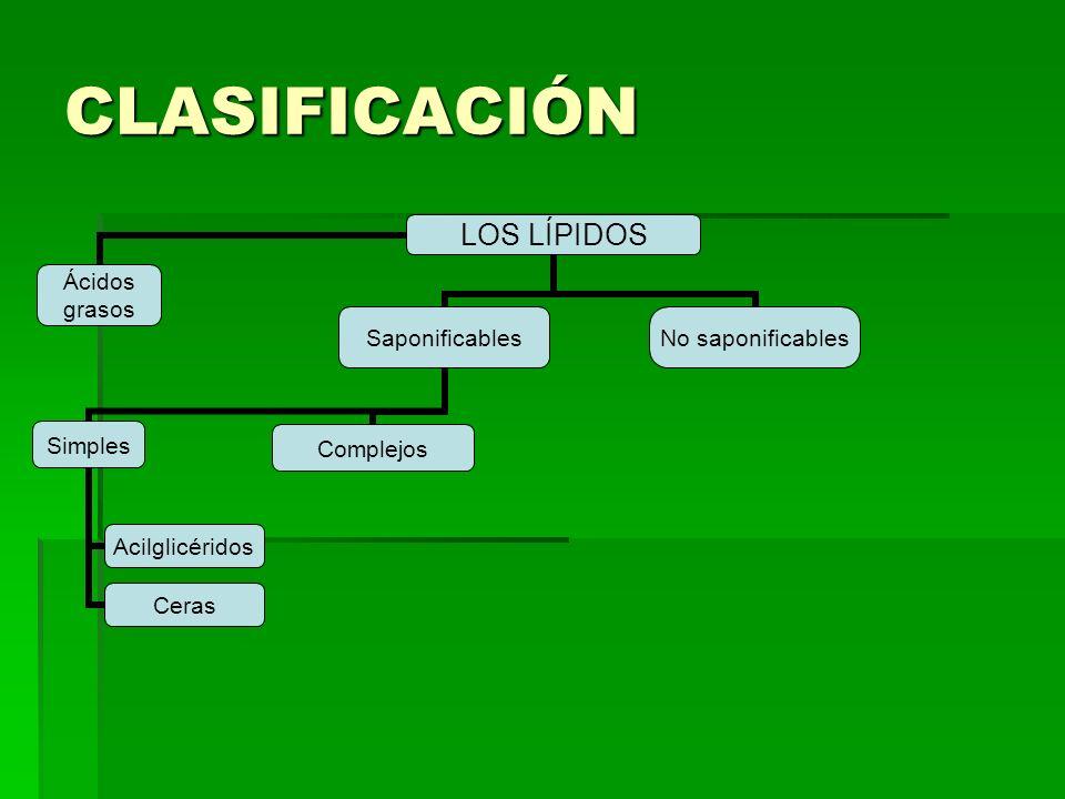 CLASIFICACIÓN LOS LÍPIDOS Ácidos grasosSaponificables Simples Acilglicéridos Ceras Complejos No saponificables