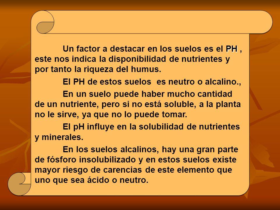 PH Un factor a destacar en los suelos es el PH, este nos indica la disponibilidad de nutrientes y por tanto la riqueza del humus.