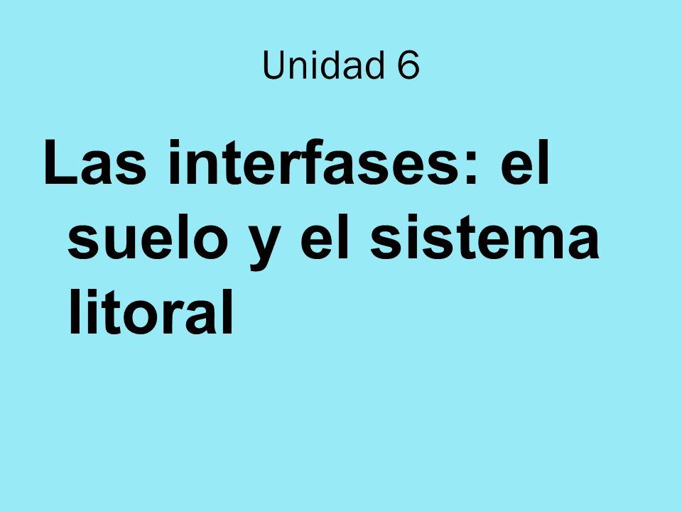 Las interfases: el suelo y el sistema litoral Unidad 6