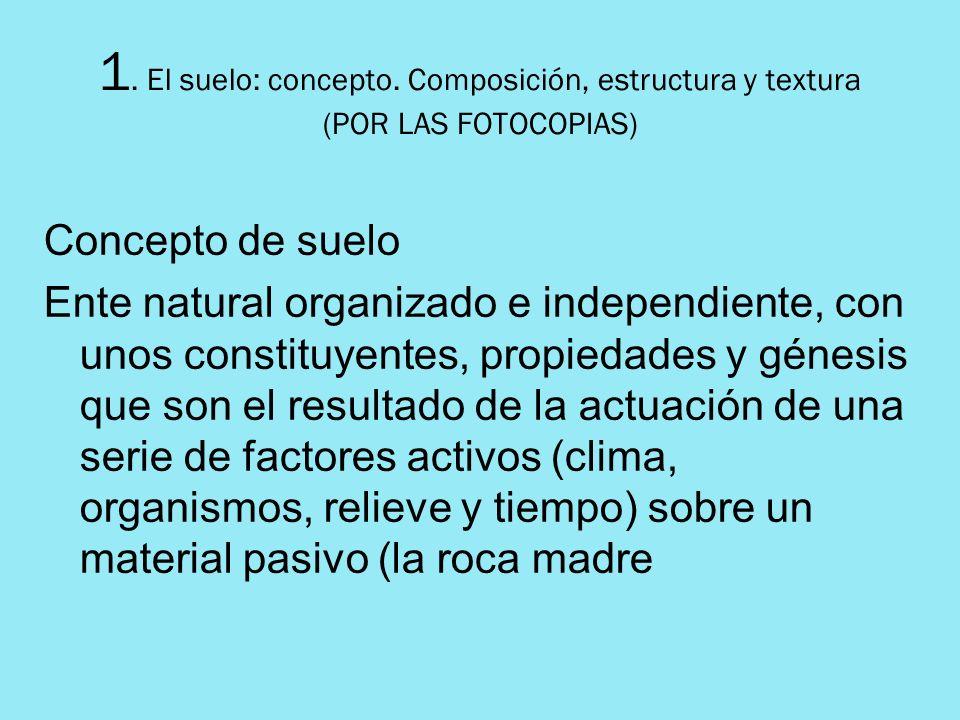 1. El suelo: concepto. Composición, estructura y textura (POR LAS FOTOCOPIAS) Concepto de suelo Ente natural organizado e independiente, con unos cons