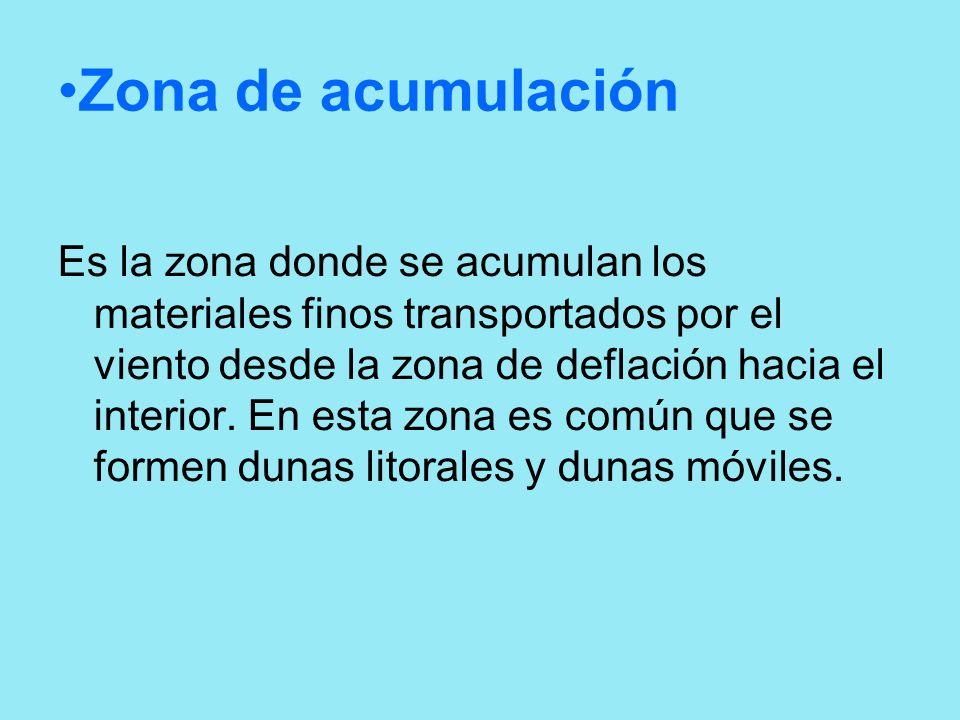 Zona de acumulación Es la zona donde se acumulan los materiales finos transportados por el viento desde la zona de deflación hacia el interior. En est