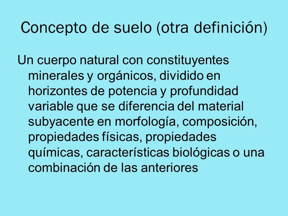 Concepto de suelo (otra definición) Un cuerpo natural con constituyentes minerales y orgánicos, dividido en horizontes de potencia y profundidad varia
