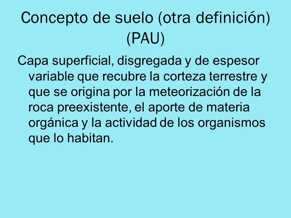 Concepto de suelo (otra definición) (PAU) Capa superficial, disgregada y de espesor variable que recubre la corteza terrestre y que se origina por la