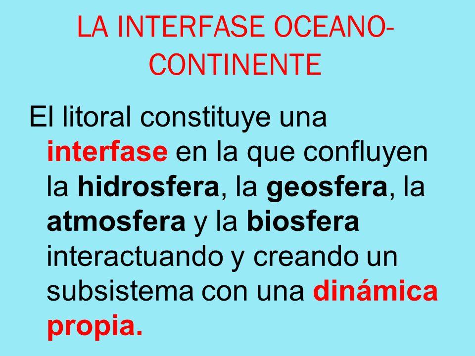 LA INTERFASE OCEANO- CONTINENTE El litoral constituye una interfase en la que confluyen la hidrosfera, la geosfera, la atmosfera y la biosfera interac