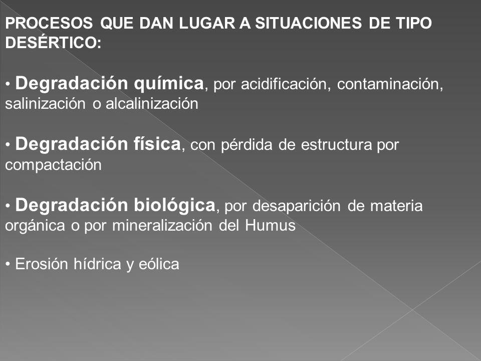 RESPUESTA PAU Proceso de pérdida de productividad de los ecosistemas terrestres por impacto humano, que conduce a condiciones desérticas. Desertificac