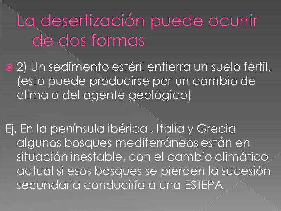 1) Se elimina la cubierta vegetal y el suelo queda expuesto a la erosión (puede ser por incendios, talas abusivas etc.)