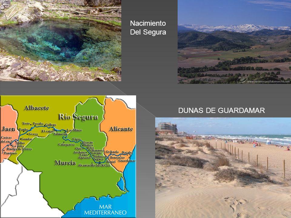 Desde finales del siglo XIX hasta entrado el siglo XX la población de Guardamar del Segura tuvo que hacer frente a un proceso de desertización: grande
