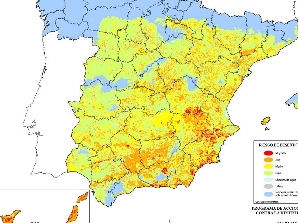 EROSIÓN Y DESERTIZACIÓN EN ESPAÑA España es el principal país europeo con gran riesgo de desertización por erosión del suelo. Perdemos 1000 millones d