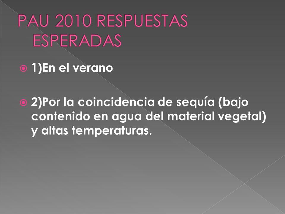 1/Los incendios forestales son frecuentes en el sur de la Península Ibérica. ¿En qué estación del año se concentran dichos incendios?. 2/¿Por qué cree
