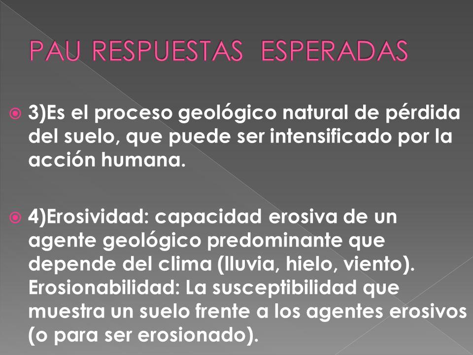 3)¿Qué se entiende por erosión del suelo? 4)¿Cuáles son dos los factores que determinan el proceso de erosión? Defínelos brevemente.