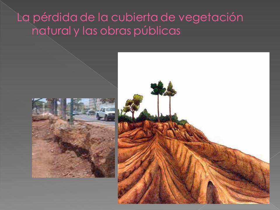 Este último término es el que está relacionado con la desertificación del territorio porque no es sostenible para el suelo. Actualmente la desertizaci