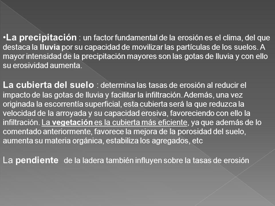 Tenemos que distinguir : FACTORES NATURALES (clima, topografía, cubierta vegetal, naturaleza del terreno). FACTORES ANTROPICOS -deforestación -sobrepa