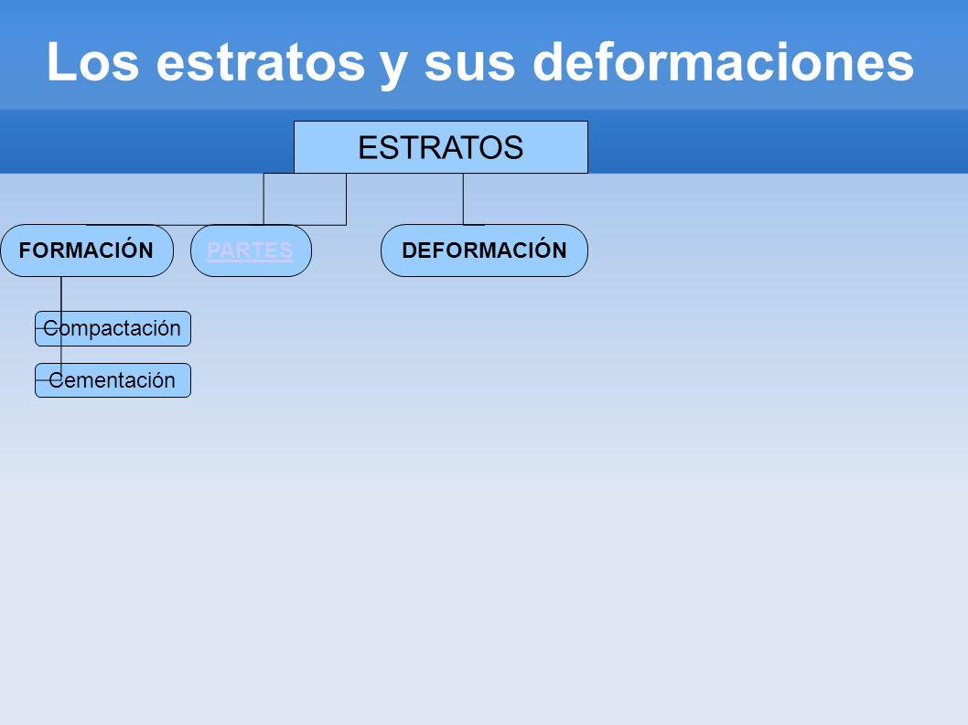 Los estratos y sus deformaciones ESTRATOS FORMACIÓNDEFORMACIÓNPARTES Compactación Cementación Techo Potencia Muro