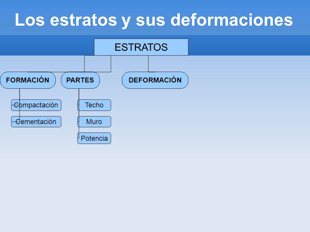 Los estratos y sus deformaciones ESTRATOS FORMACIÓNDEFORMACIÓNPARTES Compactación Cementación Techo Potencia Muro Producida Fuerzas tectónica Interior terrestre Origen