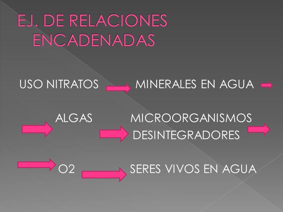 3. RELACIONES ENCADENADAS Se producen entre mas de dos variables. Si el número total de relaciones INVERSAS ES PAR, la relación global será DIRECTA. E
