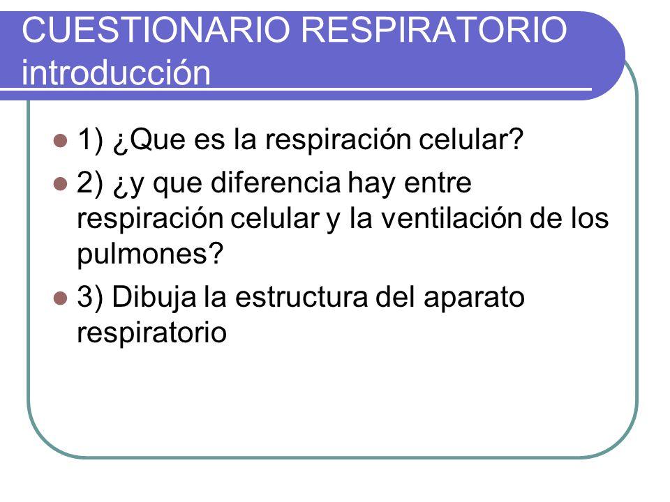 CUESTIONARIO RESPIRATORIO introducción 1) ¿Que es la respiración celular? 2) ¿y que diferencia hay entre respiración celular y la ventilación de los p