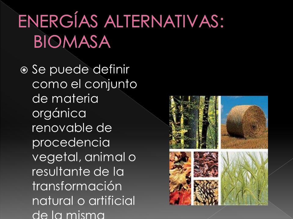 Fuentes: Residuos forestales (de podas, clareos) Desechos agrícolas (poda, paja…) Desechos animales Basuras urbanas, a través de la incineración y utilización de calor o vapor de agua.