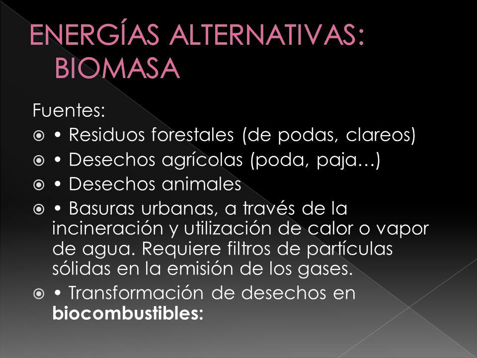 Biogas (60 % metano y 40 % dióxido de carbono) por descomposición anaerobia de residuos Etanol, por fermentación y destilación de cereales, remolacha y caña de azúcar, también de maíz Metanol, por transformación de madera, restos agrarios, basuras y carbón Bioaceites, a partir de semillas oleaginosas como la colza, girasol y soja