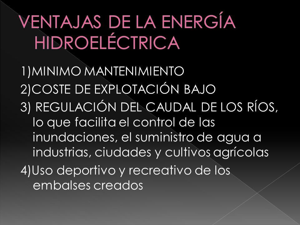 1) IMPACTO VISUAL DE LA PRESA 2) PÉRDIDA DE SUELO AGRÍCOLA O FORESTAL (por inundación de terrenos) 3) REDUCCIÓN DE LA BIODIVERSIDAD 4) MODIFICACIÓN DEL NIVEL FREÁTICO 5) MODIFICACIÓN DE LA CALIDAD DEL AGUA EMBALSADA (posible eutrofización) 6) EROSIÓN DE LAS ZONAS COSTERAS DE LA DESEMBOCADURA (deltas, barras etc.) 7) DESPLAZAMIENTOS HUMANOS (emigración)