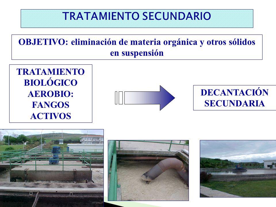 TRATAMIENTO SECUNDARIO TRATAMIENTO BIOLÓGICO AEROBIO: FANGOS ACTIVOS DECANTACIÓN SECUNDARIA OBJETIVO: eliminación de materia orgánica y otros sólidos