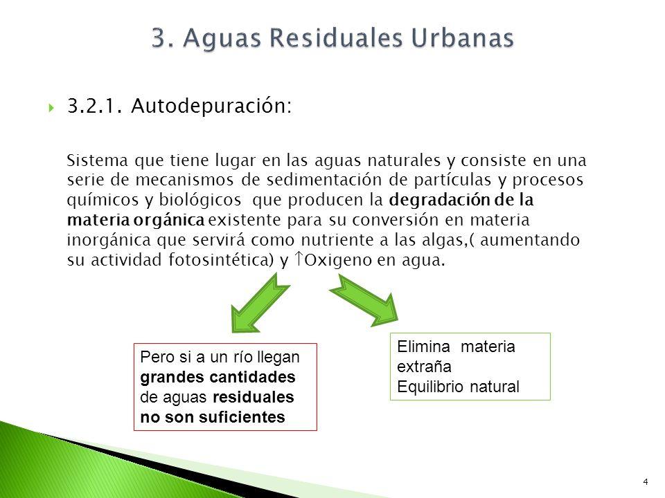 3.2.1. Autodepuración: Sistema que tiene lugar en las aguas naturales y consiste en una serie de mecanismos de sedimentación de partículas y procesos