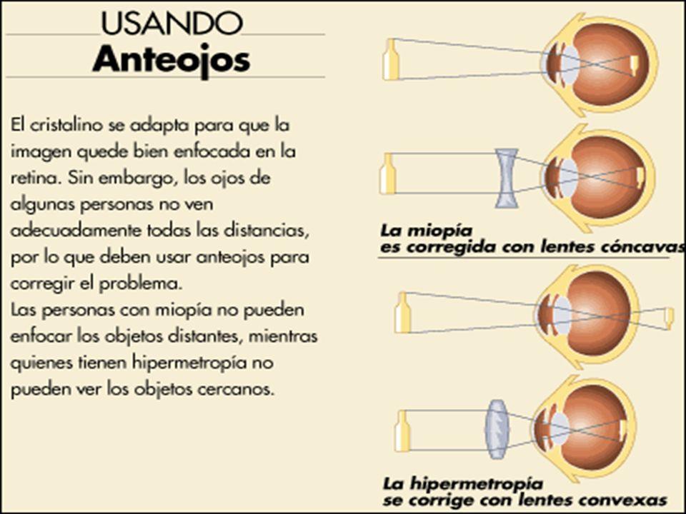 Cuestionario oido 1) ¿Qué es la audición.(2R) 2) ¿Dónde reside el sentido del equilibrio.