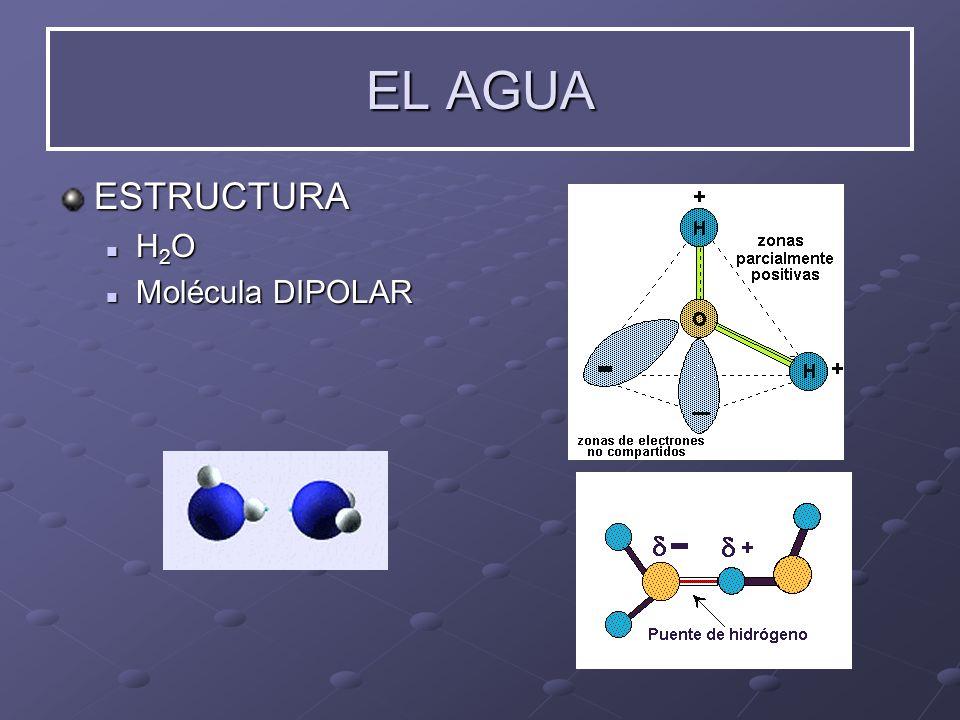 EL AGUA ESTRUCTURA H 2 O H 2 O Molécula Molécula DIPOLAR