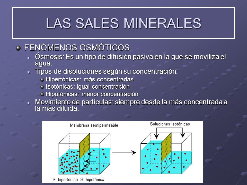 LAS SALES MINERALES FENÓMENOS OSMÓTICOS Ósmosis: Ósmosis: Es un tipo de difusión pasiva en la que se moviliza el agua. Tipos Tipos de disoluciones seg