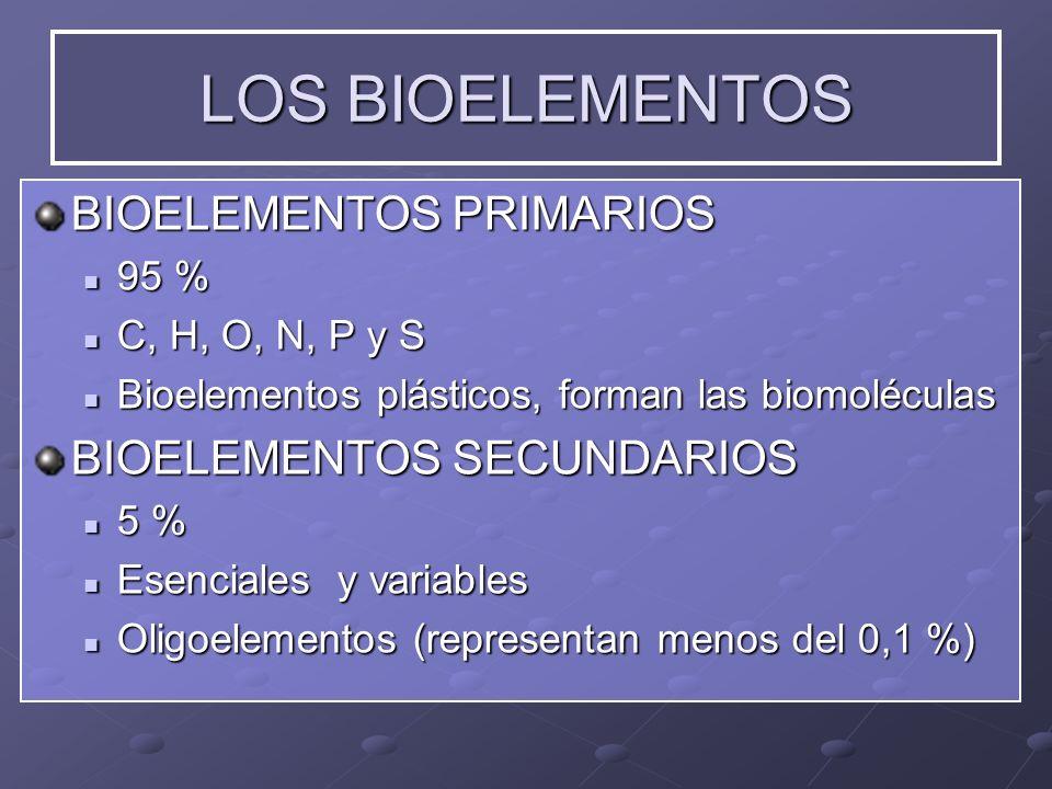 LOS BIOELEMENTOS BIOELEMENTOS PRIMARIOS 95 % 95 % C, H, O, N, P y S C, H, O, N, P y S Bioelementos plásticos, forman las biomoléculas Bioelementos plá