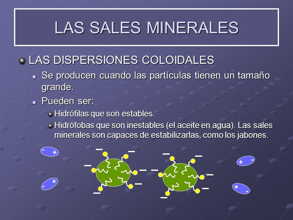 LAS SALES MINERALES LAS DISPERSIONES COLOIDALES Se Se producen cuando las partículas tienen un tamaño grande. Pueden Pueden ser: Hidrófilas que son es