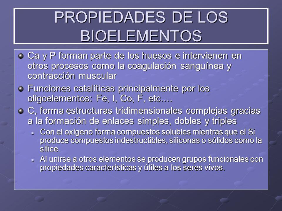Ca y P forman parte de los huesos e intervienen en otros procesos como la coagulación sanguínea y contracción muscular Funciones catalíticas principal