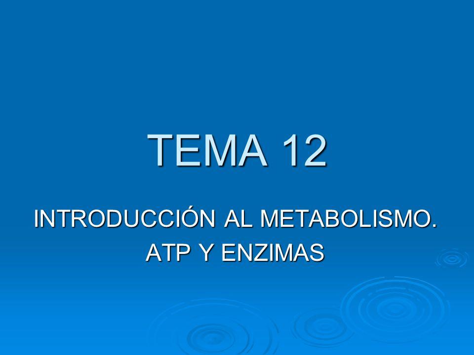 TEMA 12 INTRODUCCIÓN AL METABOLISMO. ATP Y ENZIMAS