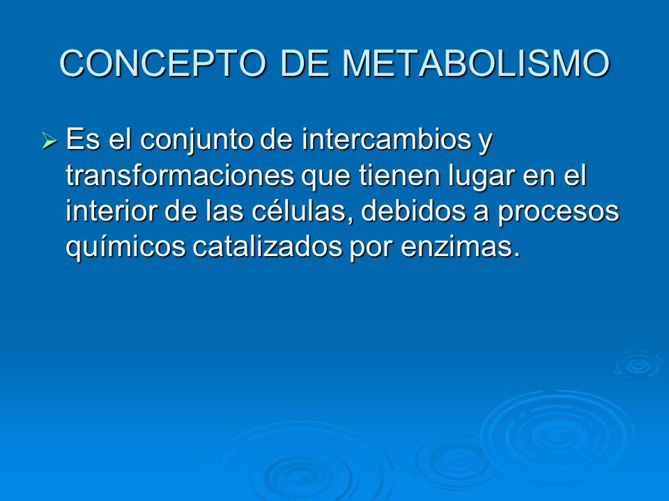 CONCEPTO DE METABOLISMO Es el conjunto de intercambios y transformaciones que tienen lugar en el interior de las células, debidos a procesos químicos