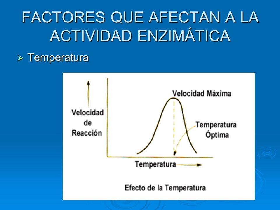 FACTORES QUE AFECTAN A LA ACTIVIDAD ENZIMÁTICA Temperatura Temperatura