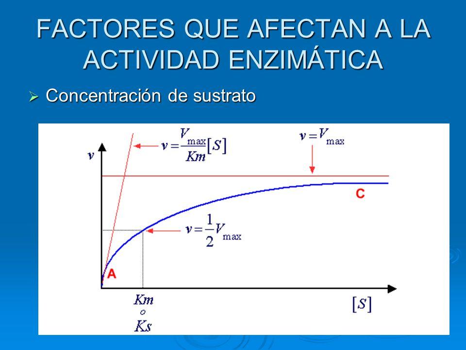 FACTORES QUE AFECTAN A LA ACTIVIDAD ENZIMÁTICA Concentración de sustrato Concentración de sustrato