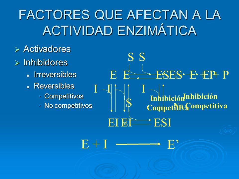FACTORES QUE AFECTAN A LA ACTIVIDAD ENZIMÁTICA Activadores Inhibidores Irreversibles Reversibles Competitivos No competitivos EES EI I S E + P Inhibic