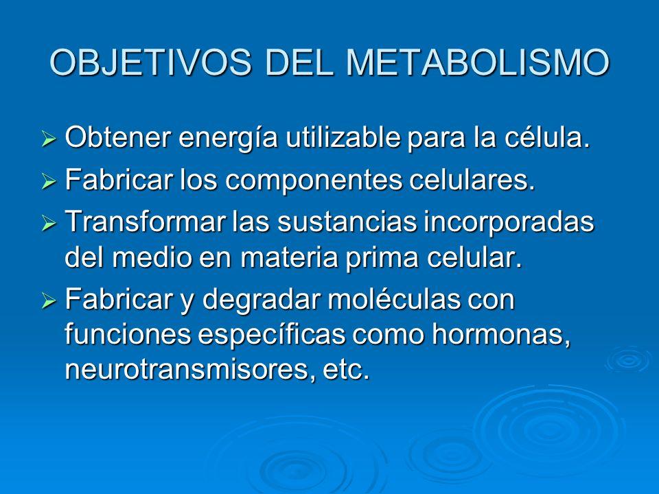 OBJETIVOS DEL METABOLISMO Obtener energía utilizable para la célula. Fabricar los componentes celulares. Transformar las sustancias incorporadas del m
